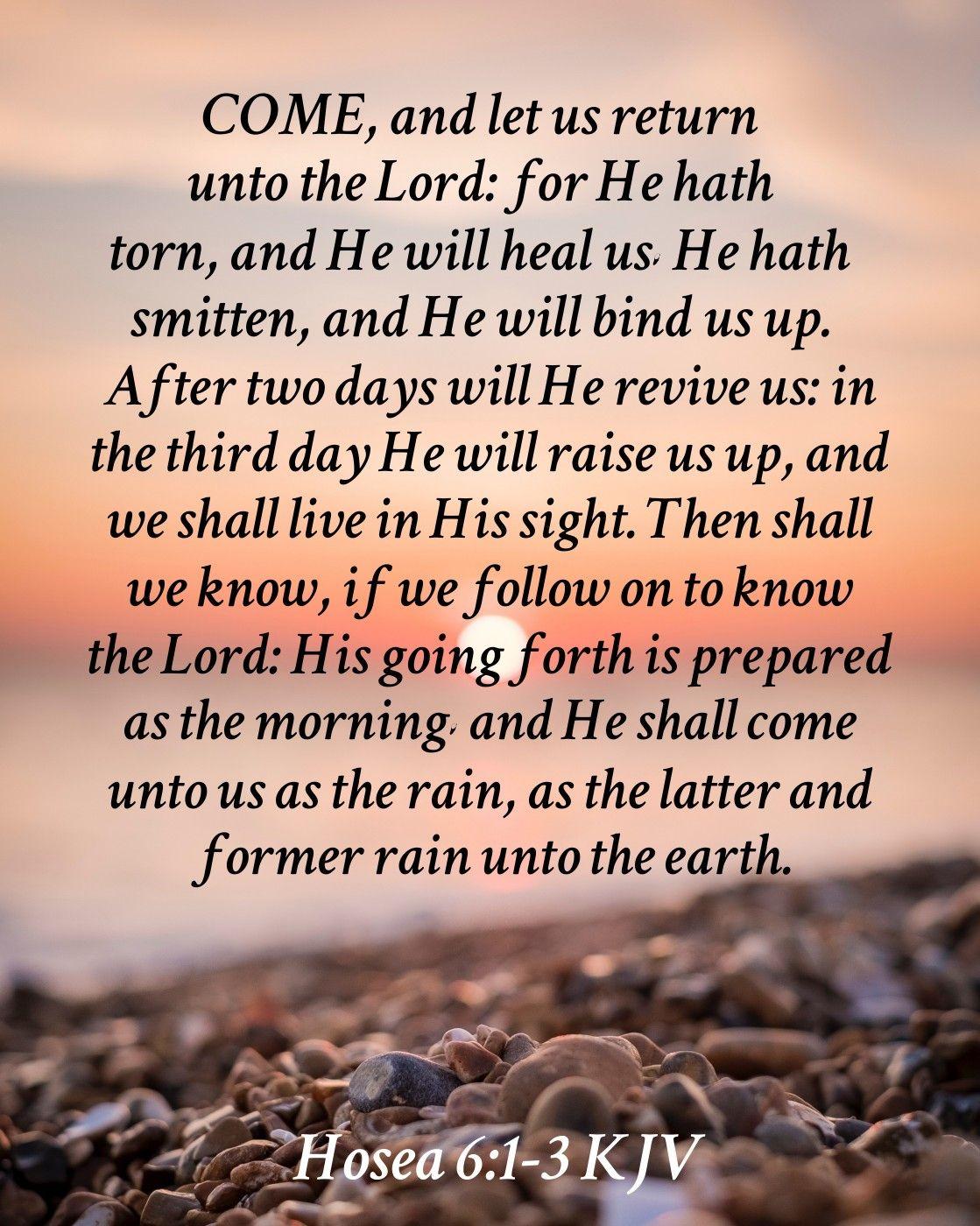 Hosea 6 1 3 Kjv Bible Truth Scripture Lettering Kjv