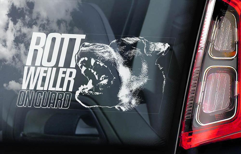 Rottweiler on Guard Car Window Sticker Rottie Beware