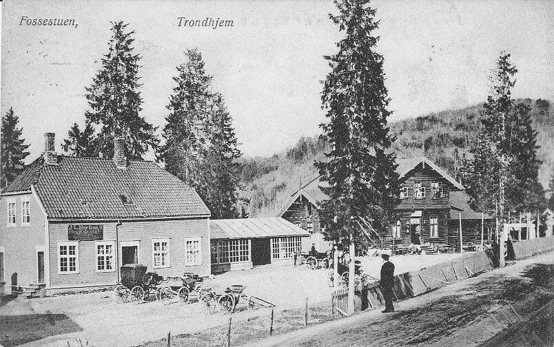 SØR TRØNDELAG: Trondhjem - Fossestuen utg Werners kunstforlag