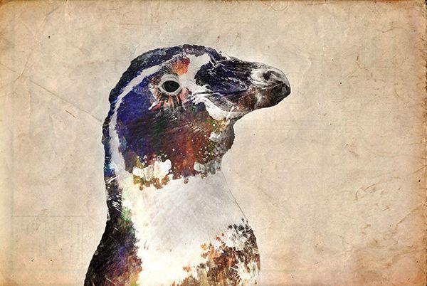 Pingouin De Madagascar Aquarelle Numerique On Behance Illus Et