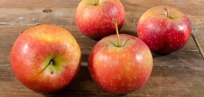 manger une pomme avant chaque repas pour maigrir - Le blog