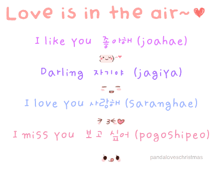 Korean Love Words