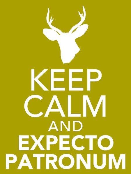 Keep calm and expecto patronum