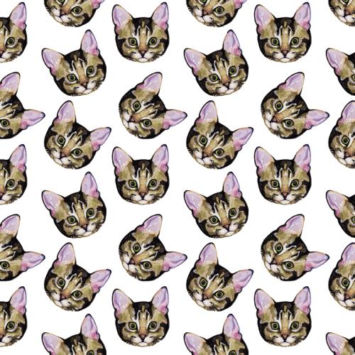 Black Cat Background Tumblr cats tumblr background...