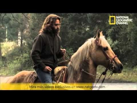 Nat Geo | Domador de Caballos | Thor