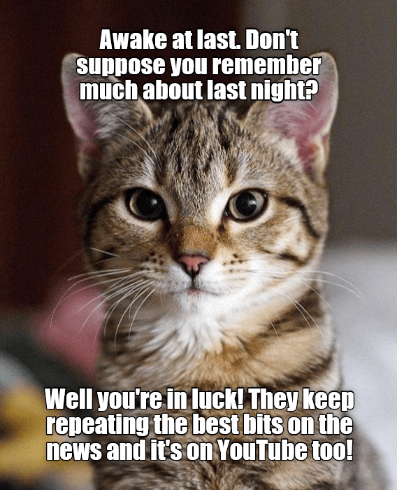 Top 25 Memes Of The Week Cheezburger Users Edition 121 Best Cat Memes Funny Cat Memes Cheezburger