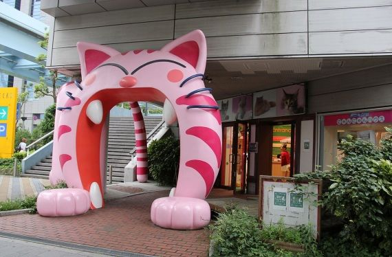 Cat mouth entrance of a pet shop in Obaida, Japan #kawaii - Carefully selected by GORGONIA www.gorgonia.it
