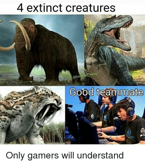 Problem Reaction Solution Meme