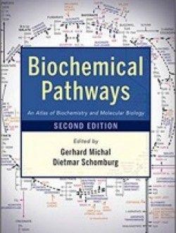 Biochemical Pathways An Atlas Of Biochemistry And Molecular Biology 2nd Edition Pdf Download Here Molecular Biology Biochemistry Chemistry Textbook