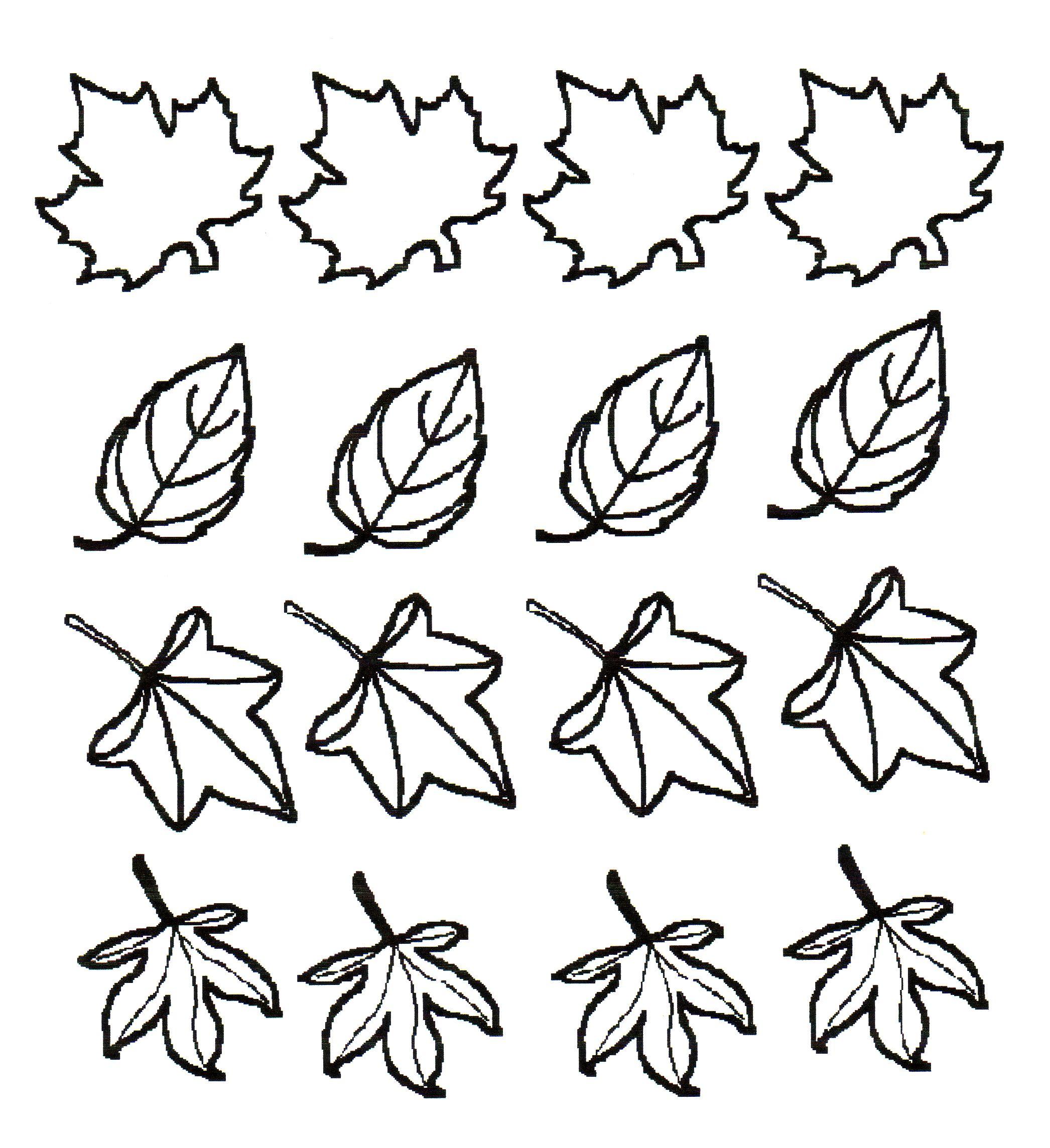 Pin Van Laporte Susy Op Onderwijs Thema Herfst Herfst Bomen Bloemensjabloon Herfstbladeren