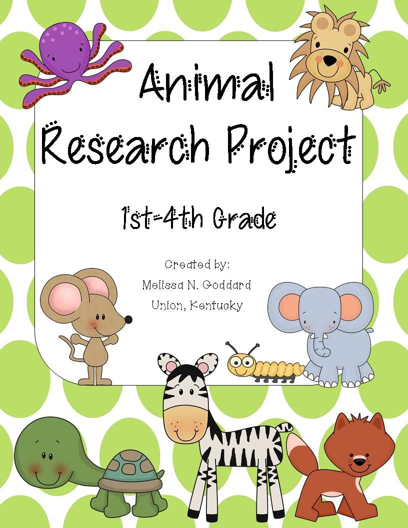 best images about st grade animal habitats 17 best images about 1st grade animal habitats research report rainforests and animal habitats