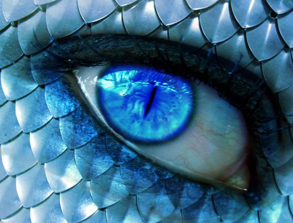 Dragon S Curse Iii Unedited Cool Eyes Aesthetic Eyes Crazy Eyes