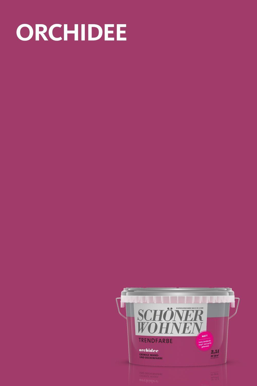 Trendfarbe Orchidee Schonerwohnen Orchidee Eine Der Originalen Trendfarben Von Schoner Wohnen Farbe In 2020 House Design Design Cooler