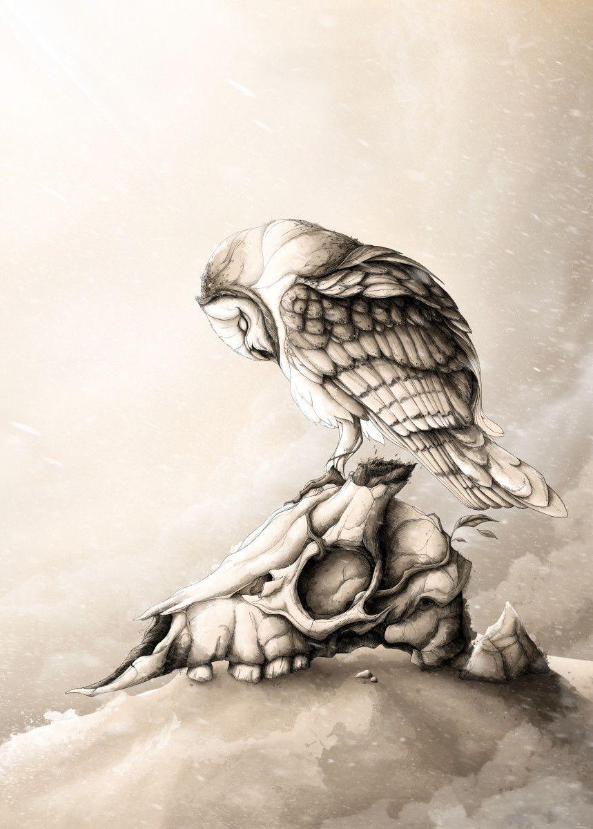 Owl Art Modern Art Cool Art Art Ideas Art Deco Art Fantasy Art Sketches Art Watercolor Art Projects Art Inspiration Animal Drawings Drawings Cartoon Drawings