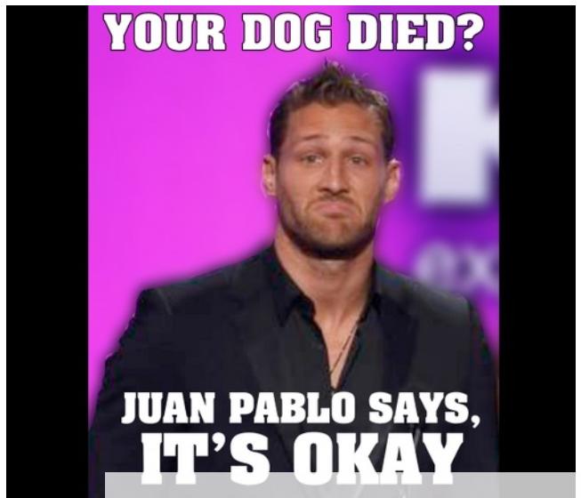 57d3d1b641dd580a84cacdd8ccc4ae27 your dog died? juan pablo says, it's okay the bachelor meme joke
