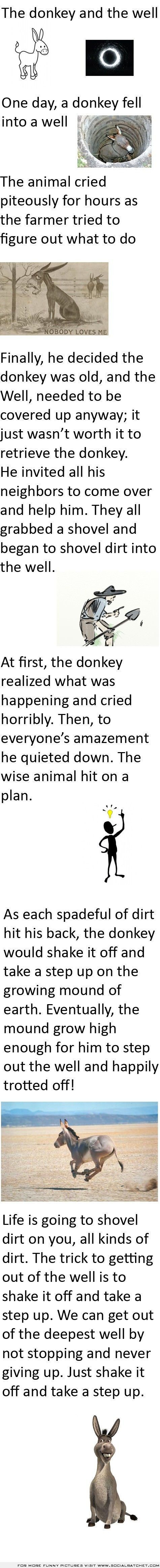 t first I was confused and almost cried thinking why would someone try to bury alive a donkey!! It's inhuman but then I read the last paragraph and guys, this is absolutely true you just have to shake that dirt off and keep moving forwards; in the donkeys case, upwards.