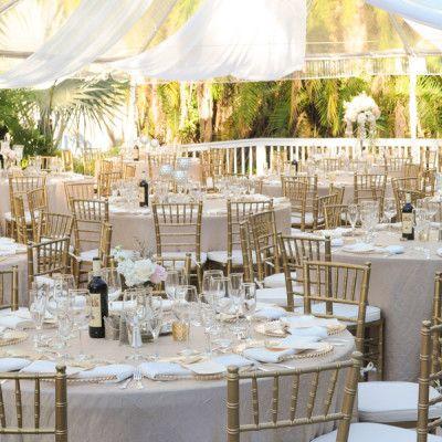 Orlando Wedding And Party Rentals Chair Hire Chiavari Chairs Gold Chiavari Chairs