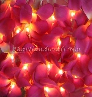 Pink String Lights Gorgeous Pink Led Hawaiian Frangipani Flower Fairy Lights  All Of The Lights Review
