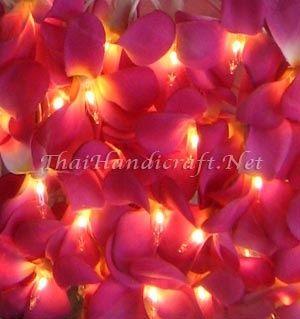 Pink String Lights Pink Led Hawaiian Frangipani Flower Fairy Lights  All Of The Lights
