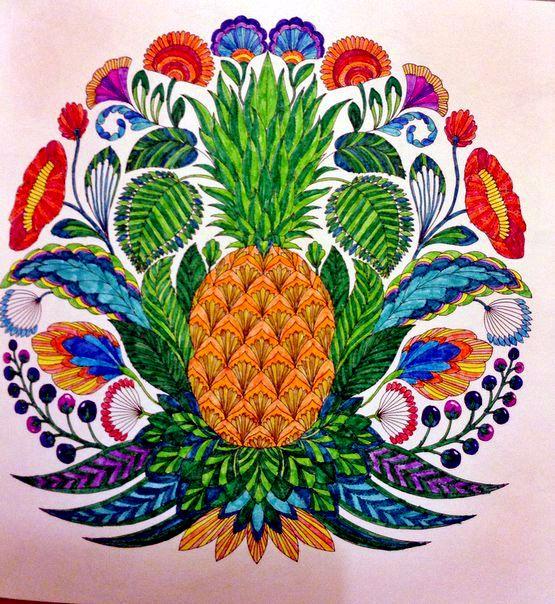 Millie Marotta Tropical Wonderland By Nadi Hennessy PINAPPLE