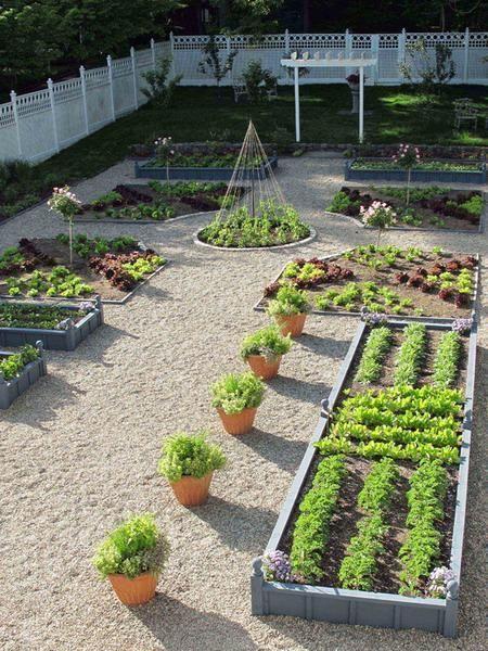 Backyard Landscaping Ideas Flowerpots And Wooden Bo For Vegetable Garden Design