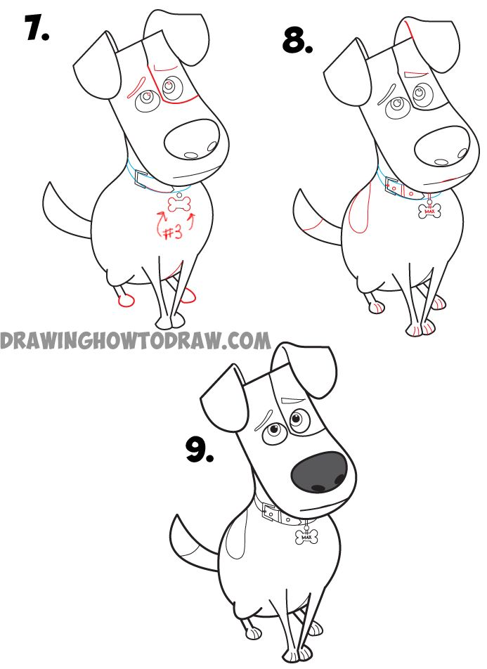 How To Draw Max From The Secret Life Of Pets Easy Step By Step Drawing Tutorial Tekenen