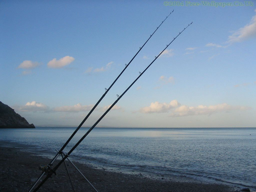 17 best images about rods on pinterest | left out, fishing rods, Fishing Rod