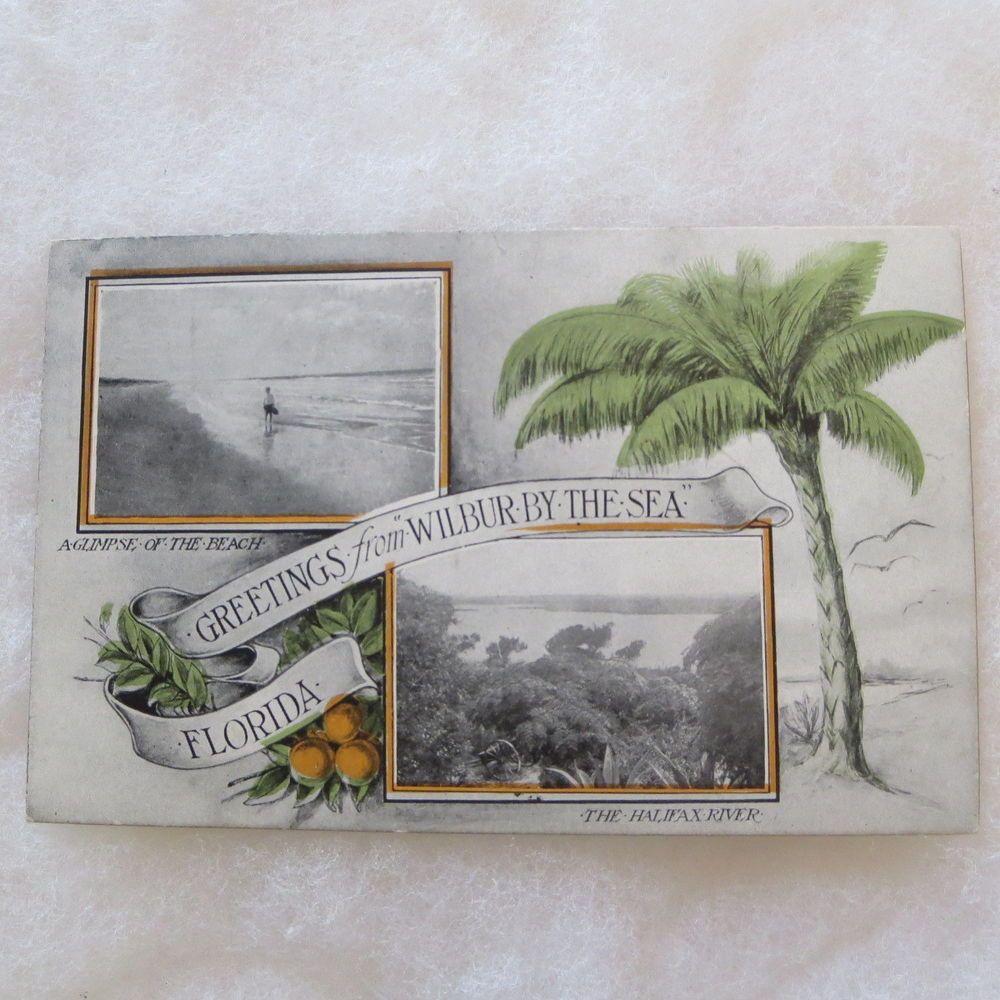 Wilbur By The Sea Florida Vintage Postcard Oranges Beach River