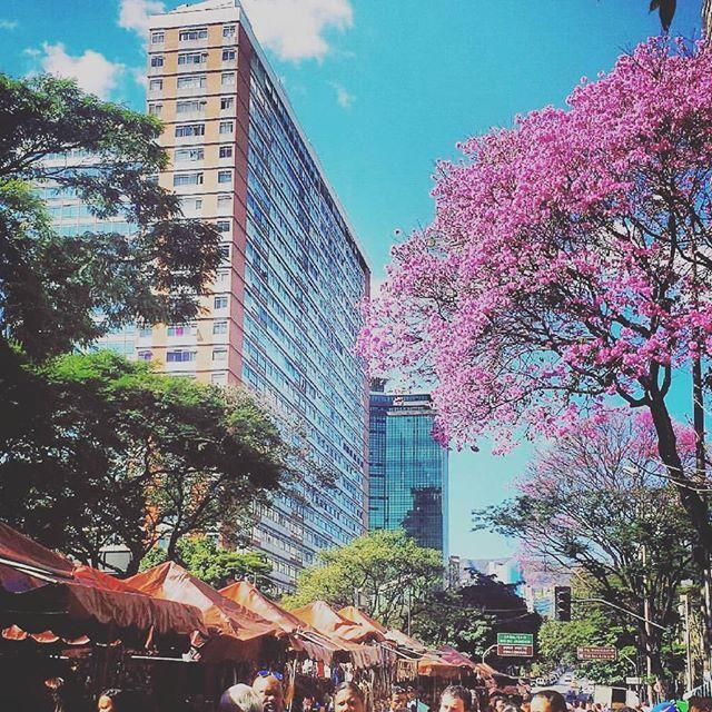 Domingo é dia de Feira também. Feira Hippie de BH.  #BH  #Belo  #Beagá  #Belzonte  #Beozonte  #FeiraHippie #BeloHorizonte  #BeloHorizonteMG  #BeloHorizonteBR  #BeloHorizonteBRA