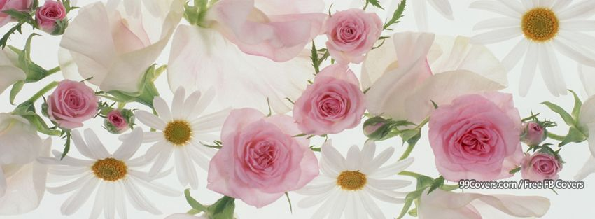 Flowers Nature Flower Symphony Pinterest Fleurs
