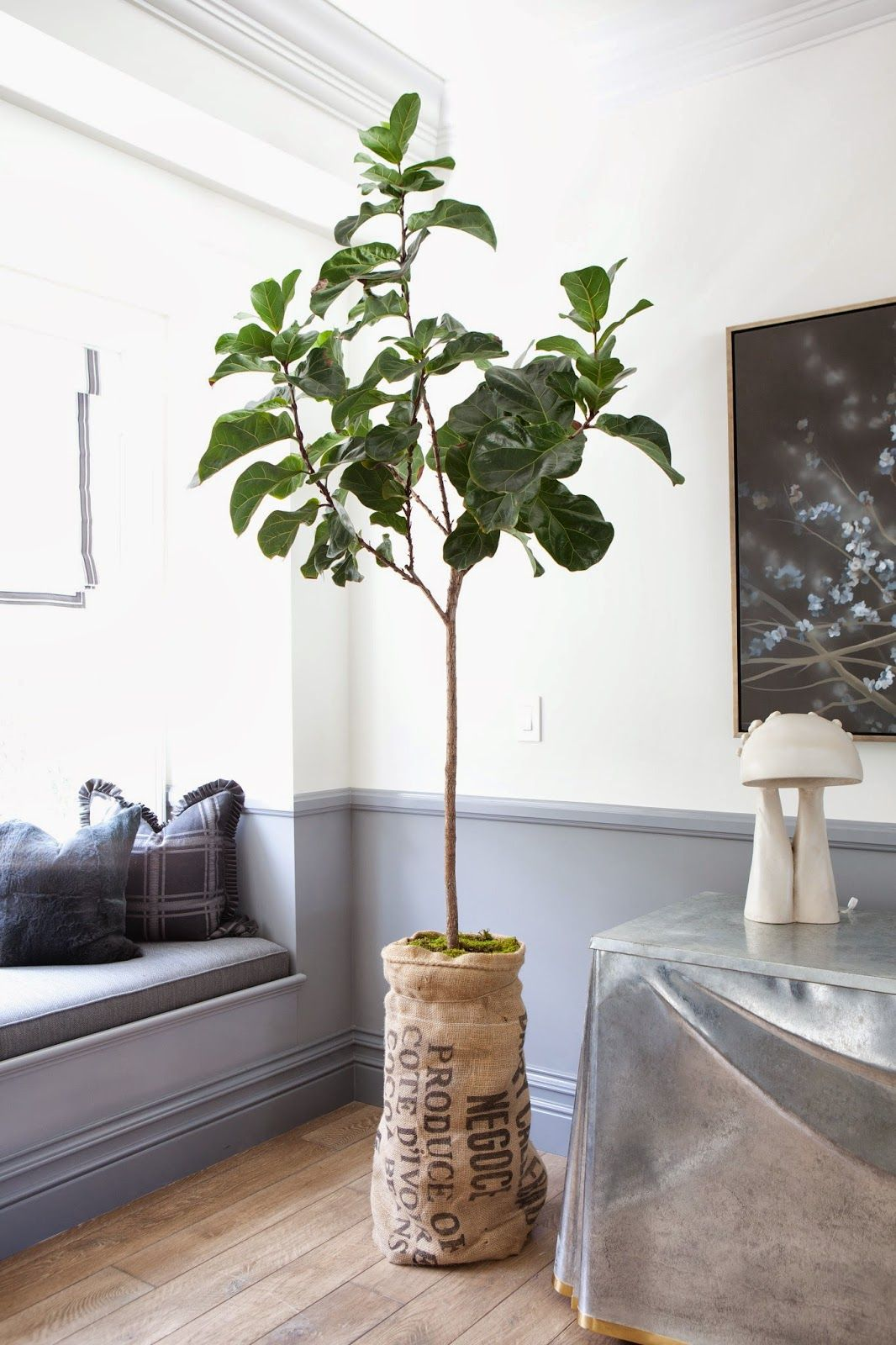 greige: interior design ideas and inspiration for the transitional home : Molly Wood Garden Design {spring sale}