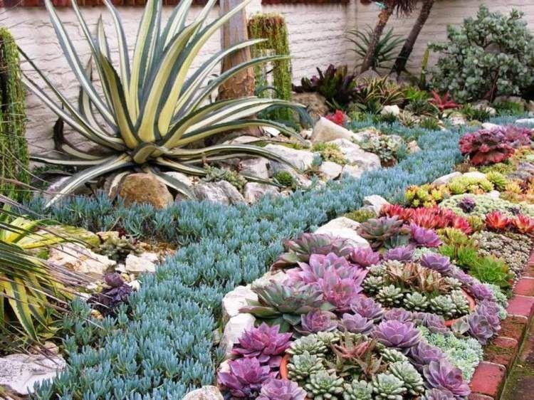 Deco Jardin En Plantes Grasses 40 Idees Pour Pimper L Exterieur