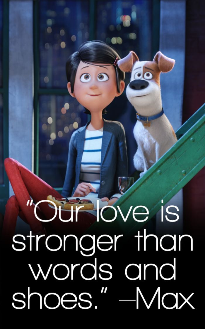 The Secret Life Of Pets Funny Pictures And Quotes Secret Life Of Pets Pets Movie Funny Animal Quotes