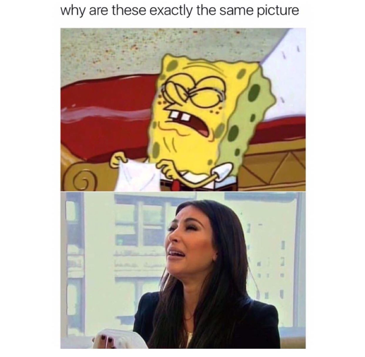 Pinterest Violet Spanglish Memes Tumblr Funny Funny Cute