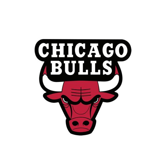 Bulls With Images Chicago Bulls Basketball Chicago Bulls