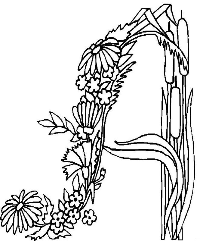 flower page printable coloring sheets alphabet flower a coloring pages free printable coloring pages - A Coloring Pages