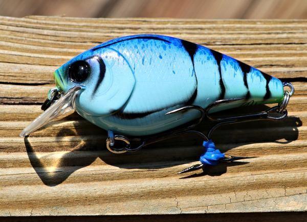 Custom Painted Squarebill Crankbaits -   - #CarpFishing #CatfishBait #crankbaits #CrappieFishing #custom #FlyTying #IceFishing #painted #SaltwaterFishing #squarebill #WomenFishing