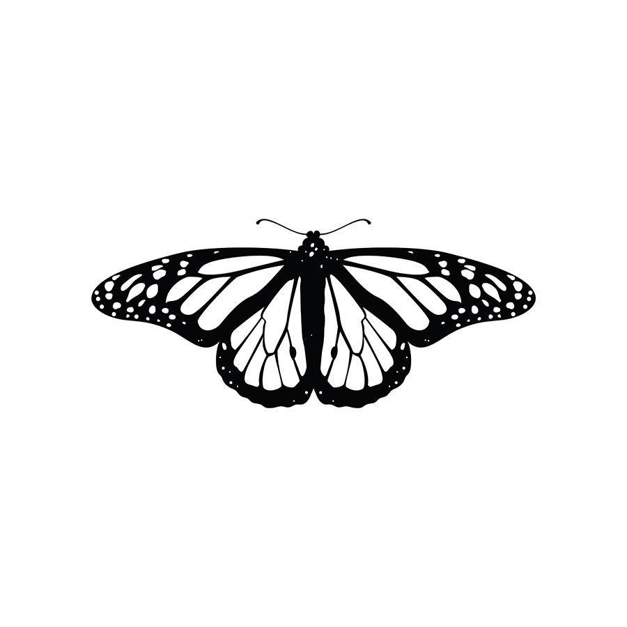 Monarch Monarch Butterfly Tattoo Butterfly Tattoo Designs Simple Butterfly Tattoo