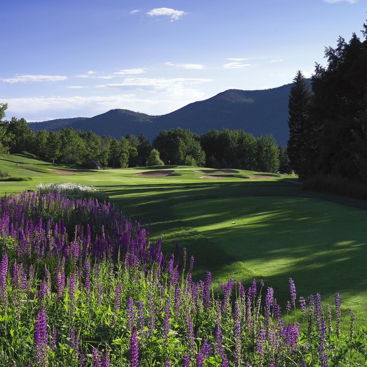 What Better Place To Golf In Steamboat Colorado Golf Golf Vacations Golf Trip