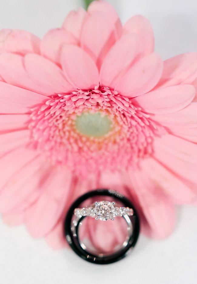 Wedding Ring Photo Ideas - Gerber Daisy
