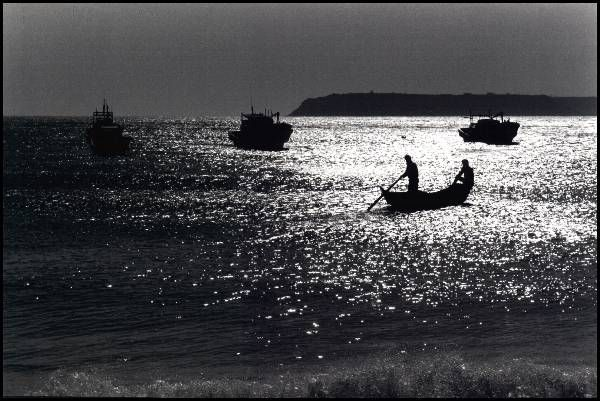海島的呼喚--張詠捷攝影展