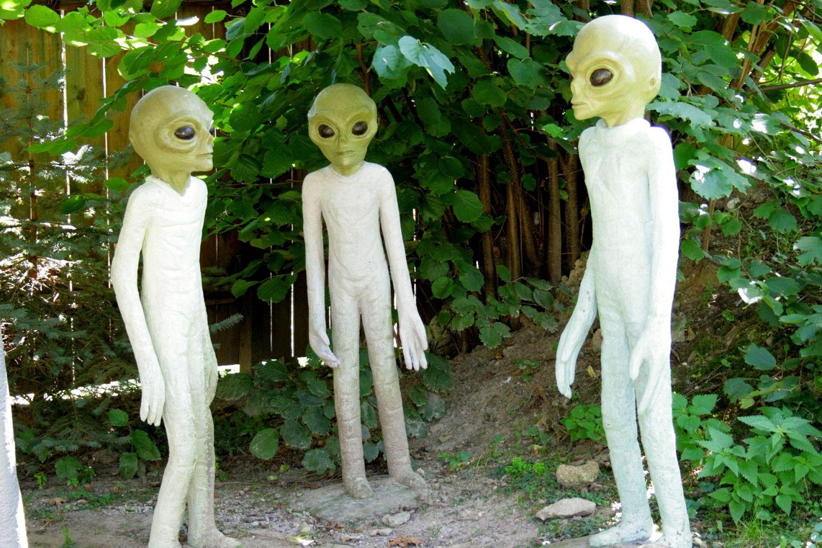 Image result for Does alien life exist?