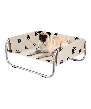 Excellent Love This Paws Pet Cot By Etna Products Polyester Metal Gmtry Best Dining Table And Chair Ideas Images Gmtryco