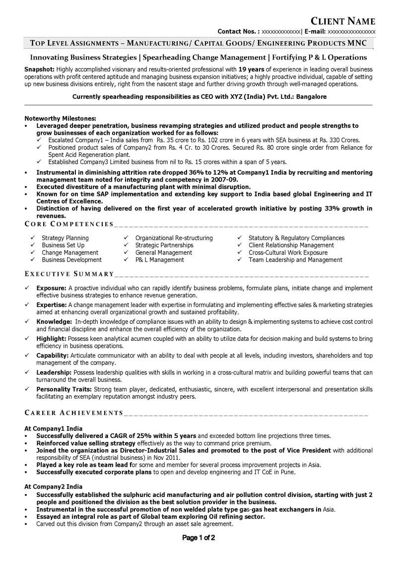 c level resume examples pinterest resume examples executive