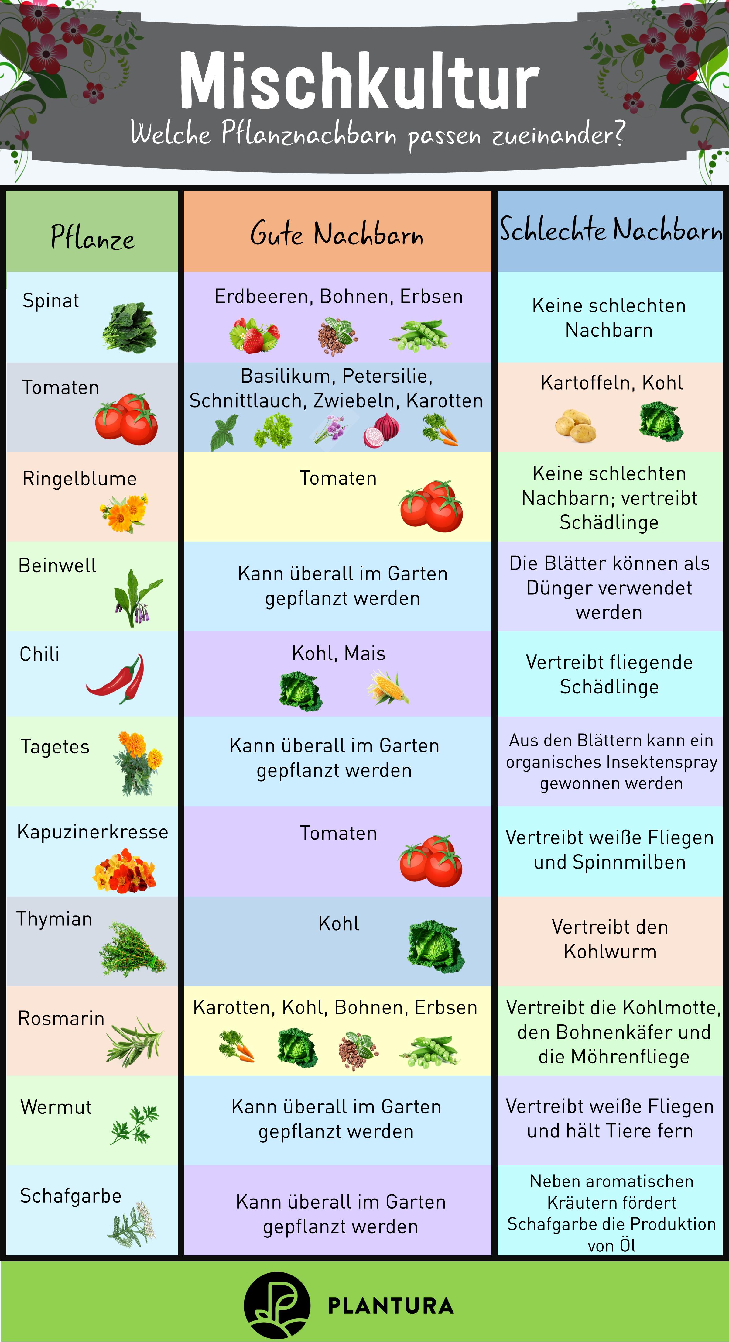Photo of Plantura – nachhaltiges Gärtnern für alle