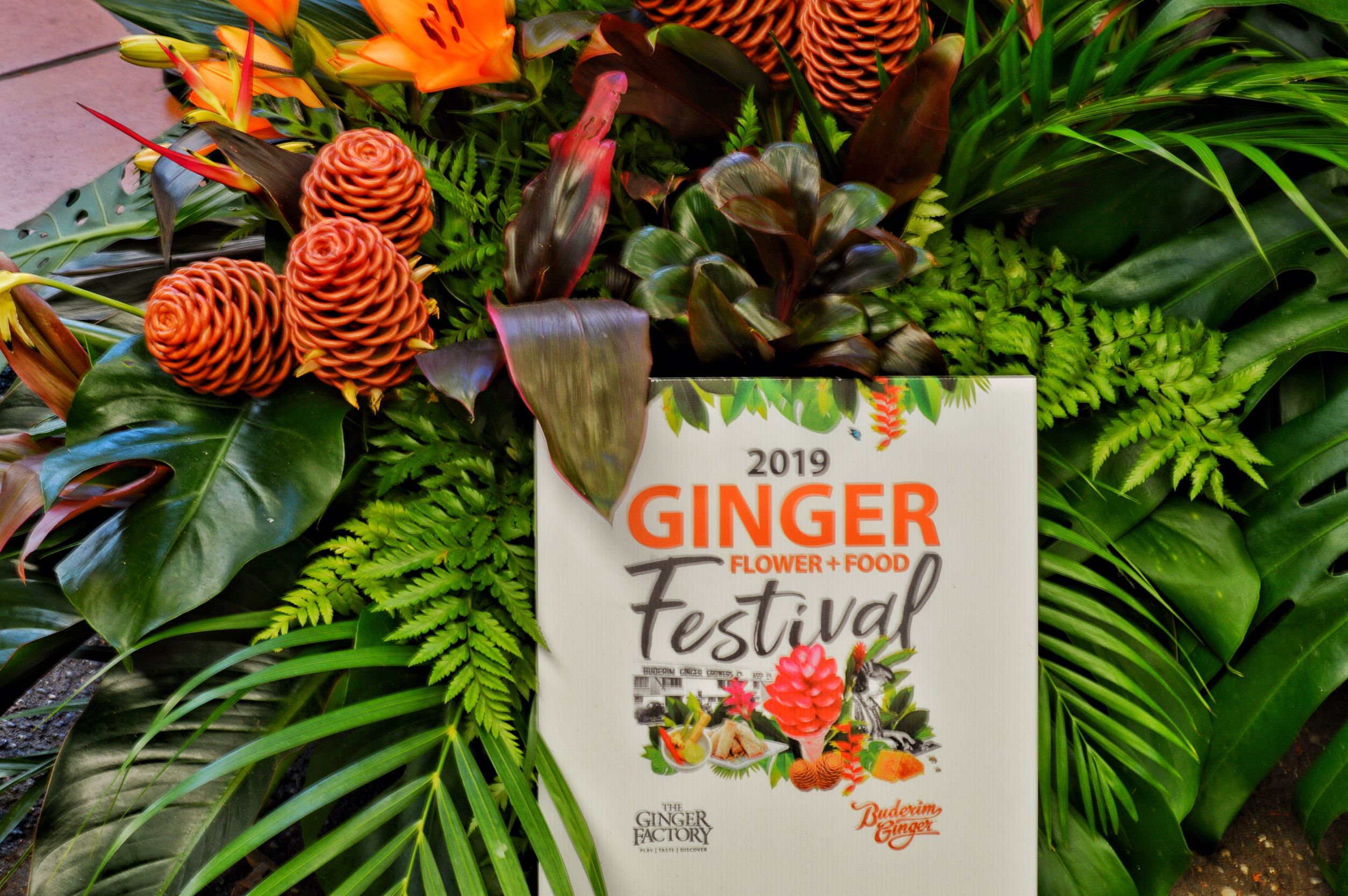 Ginger Flower Food Festival 2019 Flower Food Ginger Flower Food Festival