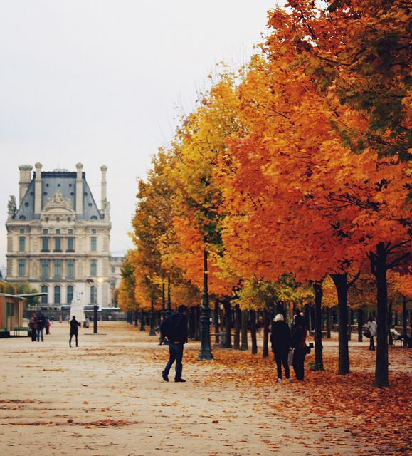 Paris Autumn, Jardin Des Tuileries