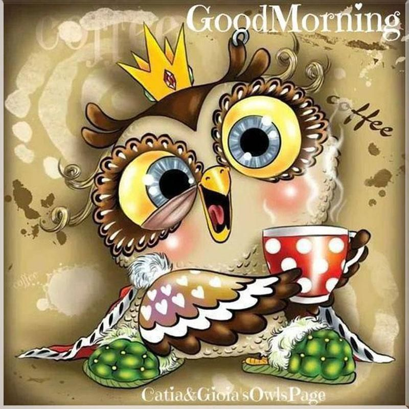 5D DIY Diamond Painting,cartoon,coffee,owl,Icon,full Diamond Embroidery,Cross Stitch,Rhinestone, Mosaic,Painting,Christmas,Gift. Yesterday's price: US $8.32 (7.33 EUR). Today's price (November 12, 2018): US $3.74 (3.34 EUR). Discount: 55%. #Arts #Crafts #Sewing