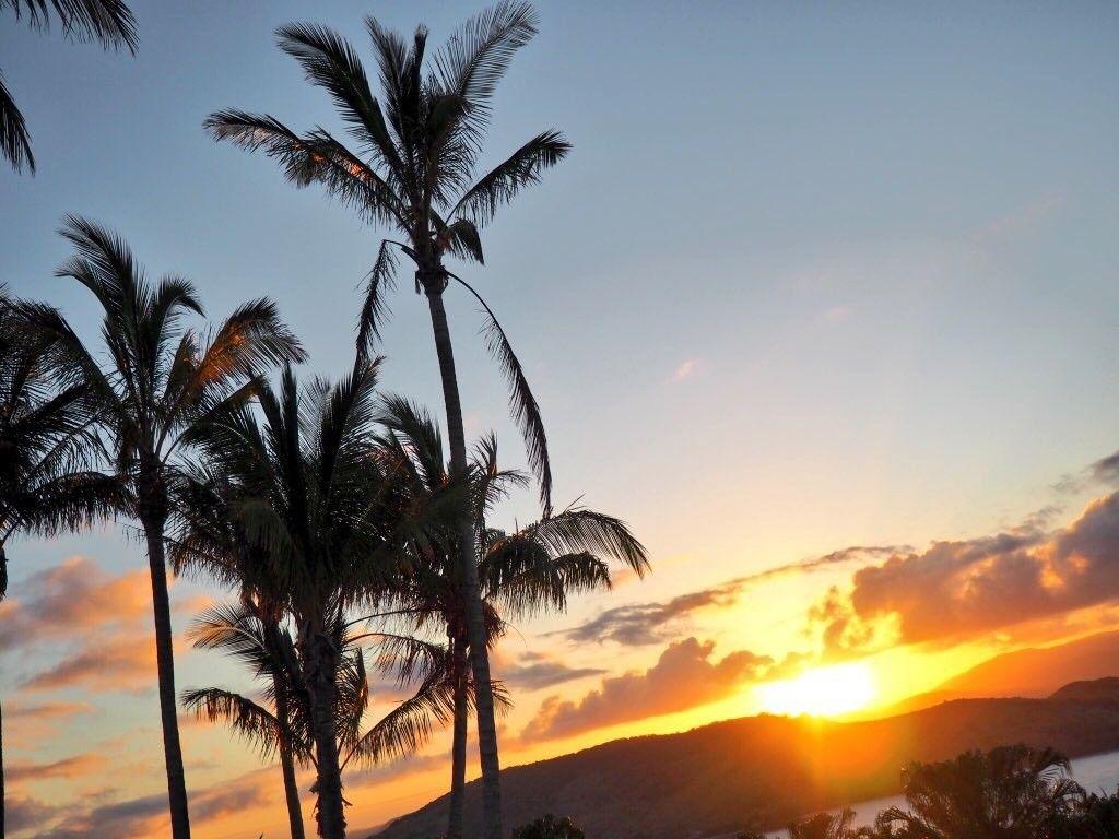 Sunset at One Tree Hill Hamilton Island