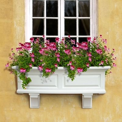 Shop Various Vinyl Window Box Styles And Sizes. Vinyl Flower Boxes Are  Attractive And Easy To Mount. Plant With The Flowers You Love For Custom  Vinyl Window ...